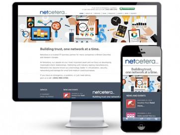 Net650X500